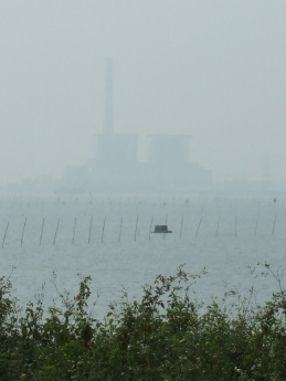 Cement Factory or Power Station ?