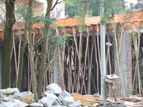 Bamboo 'Acro Props' - southern Guangxi - Dec 2009