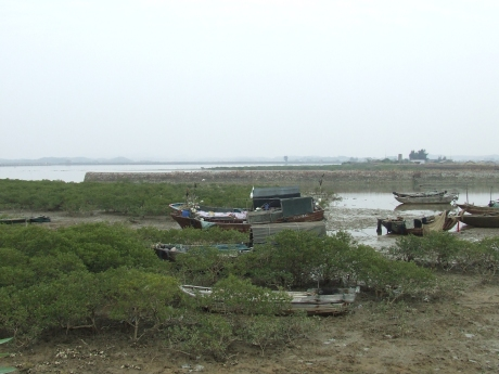 Generations of boats at rest - near Qinzhou - Dec 2009
